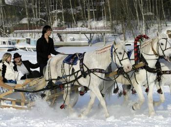 Жених и невеста на тройке лошадей
