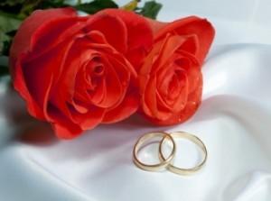 Классические обручальные кольца на белом шелке с красными розами