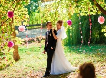 Помпонами (бумажными шарами) можно украсить деревья при свадьбе на природе