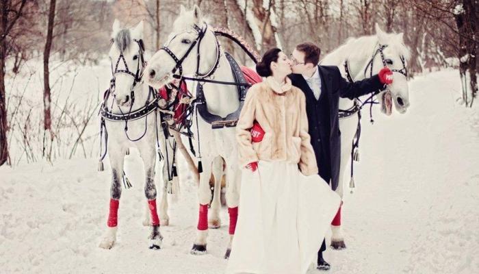 Изящная фотография с белой тройкой коней с черной упряжкой
