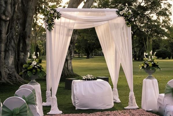 Свадебная арка шатер