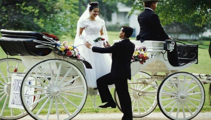 Карета - отличный вариант для свадебного кортежа