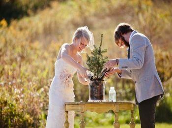 Традиция в торжественный день - посадить вместе дерево